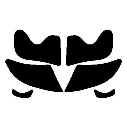 Lotus elise stoneguards