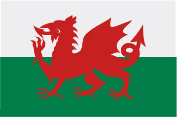 Rally Names - External Fitting - Wales Flag