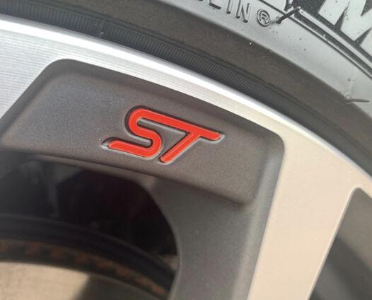 Puma 2020 ST Wheel Badge 1