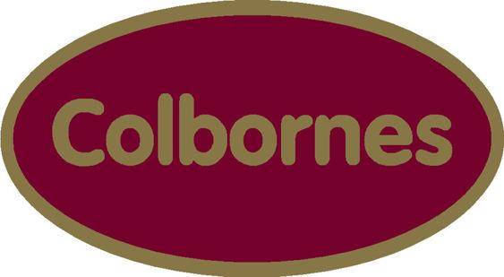 Colborne oval sticker vw audi 120x65mm